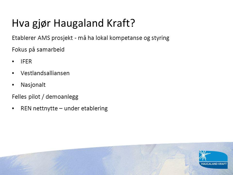 Hva gjør Haugaland Kraft? Etablerer AMS prosjekt - må ha lokal kompetanse og styring Fokus på samarbeid • IFER • Vestlandsalliansen • Nasjonalt Felles