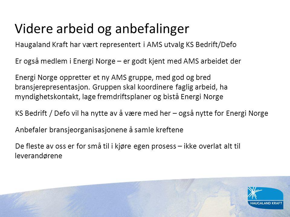 Videre arbeid og anbefalinger Haugaland Kraft har vært representert i AMS utvalg KS Bedrift/Defo Er også medlem i Energi Norge – er godt kjent med AMS