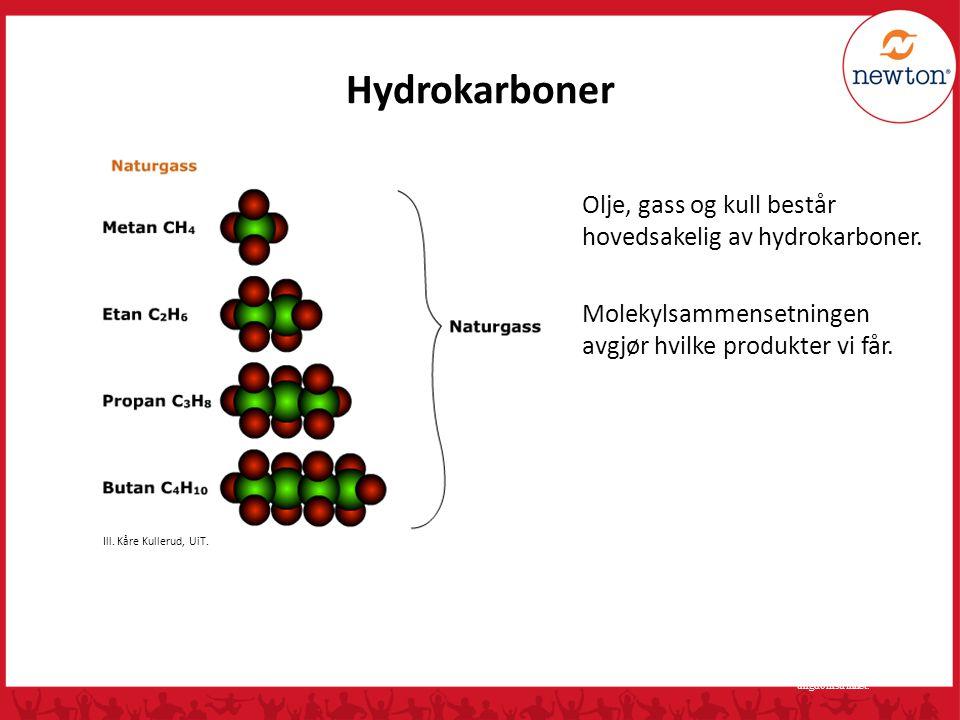 Naturgass • fargeløs brennbar gass som er dannet ved nedbrytning av organisk materiale • eksempler på naturgass: metan (CH 4 ), etan (C 2 H 6 ), propan (C 3 H 8 ), butan(C 4 H 10 ) • Alle disse er hydrokarboner