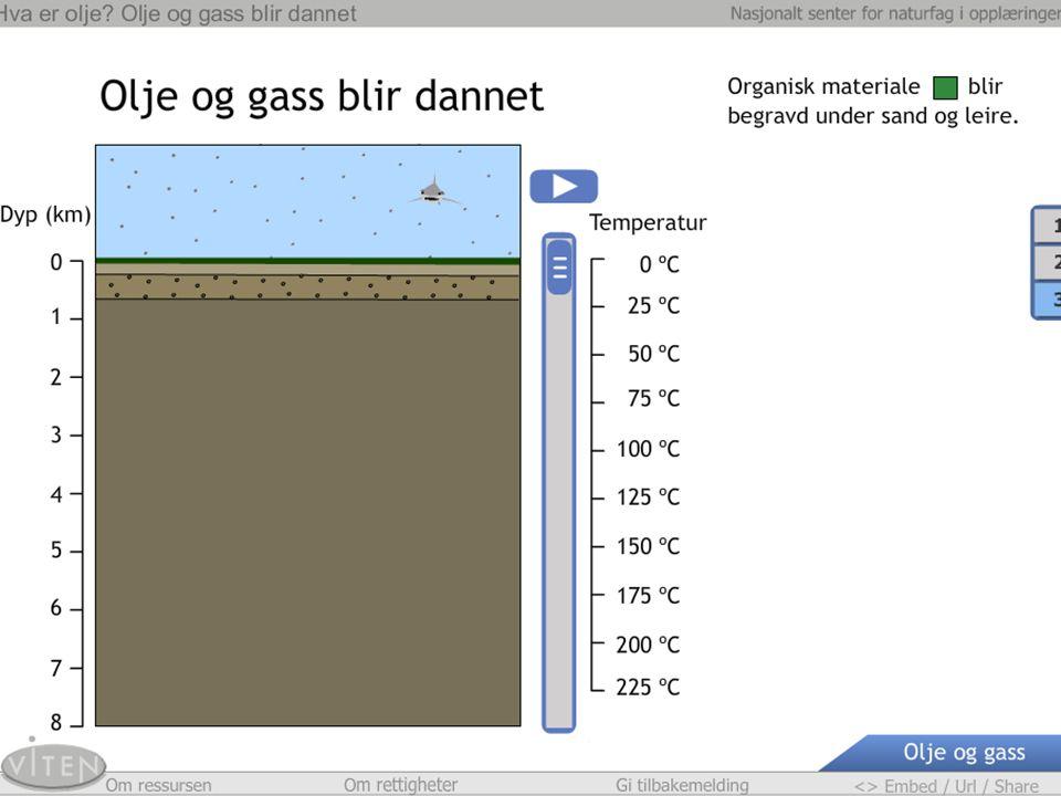 Lagring av CO 2 i berggrunnen Ill. Øyvind Hagen