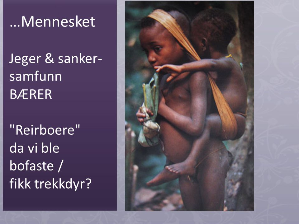…Mennesket Jeger & sanker- samfunn BÆRER