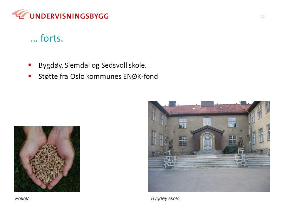 11 … forts. Bygdøy skole  Bygdøy, Slemdal og Sedsvoll skole.  Støtte fra Oslo kommunes ENØK-fond Pellets