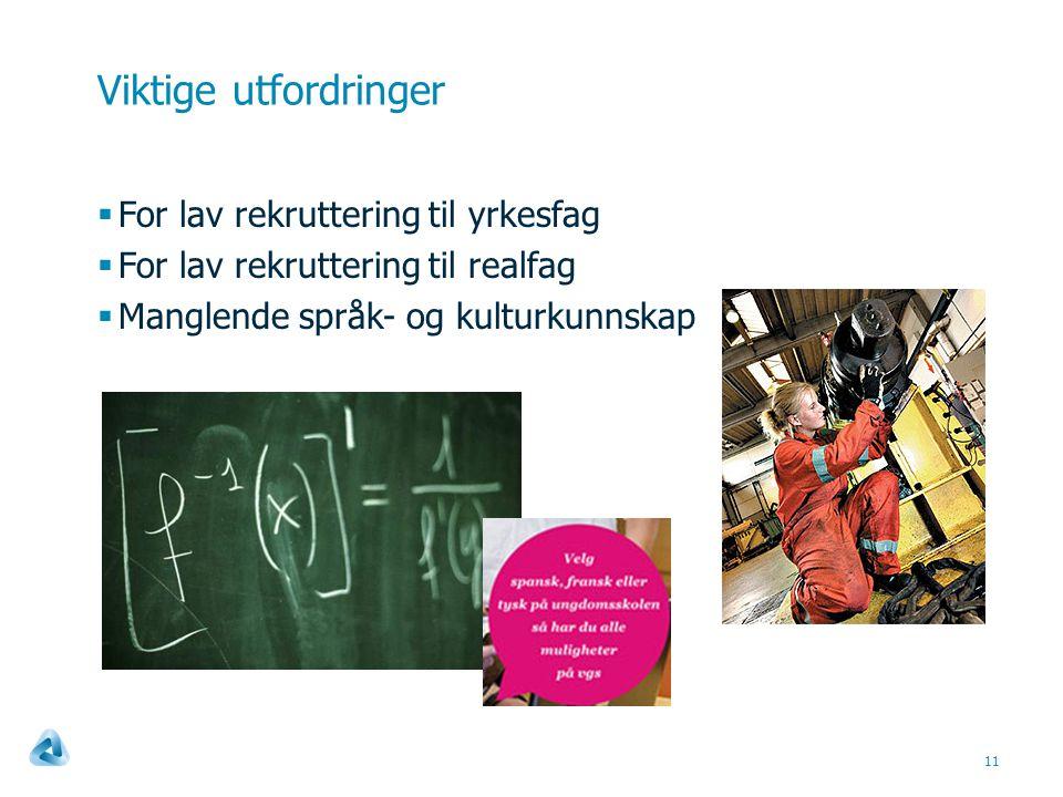 Viktige utfordringer  For lav rekruttering til yrkesfag  For lav rekruttering til realfag  Manglende språk- og kulturkunnskap 11