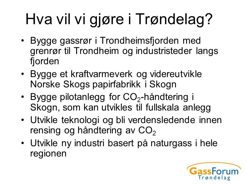 Hva vil vi gjøre i Trøndelag? •Bygge gassrør i Trondheimsfjorden med grenrør til Trondheim og industristeder langs fjorden •Bygge et kraftvarmeverk og