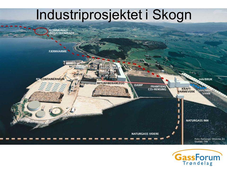 Industriprosjektet i Skogn