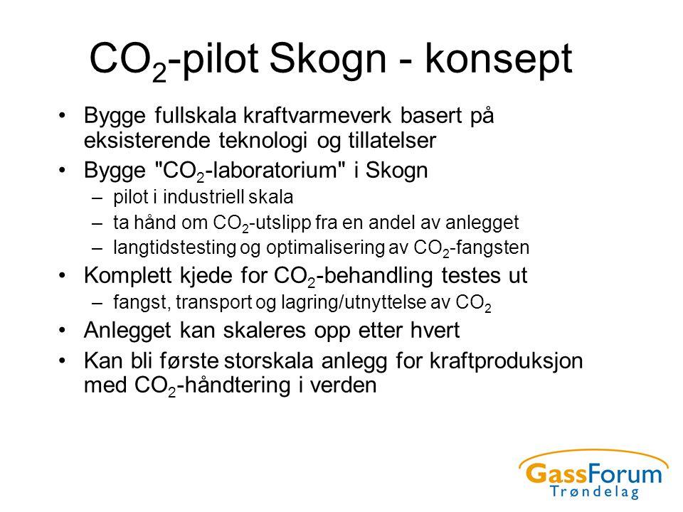 CO 2 -pilot Skogn - konsept •Bygge fullskala kraftvarmeverk basert på eksisterende teknologi og tillatelser •Bygge CO 2 -laboratorium i Skogn –pilot i industriell skala –ta hånd om CO 2 -utslipp fra en andel av anlegget –langtidstesting og optimalisering av CO 2 -fangsten •Komplett kjede for CO 2 -behandling testes ut –fangst, transport og lagring/utnyttelse av CO 2 •Anlegget kan skaleres opp etter hvert •Kan bli første storskala anlegg for kraftproduksjon med CO 2 -håndtering i verden