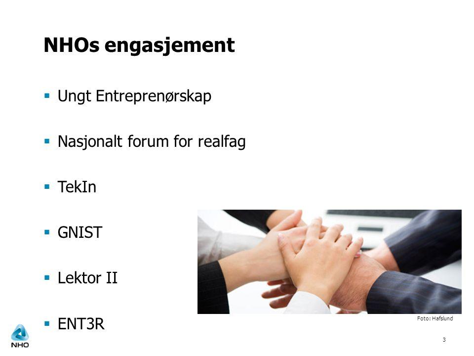 NHOs engasjement  Ungt Entreprenørskap  Nasjonalt forum for realfag  TekIn  GNIST  Lektor II  ENT3R 3 Foto: Hafslund