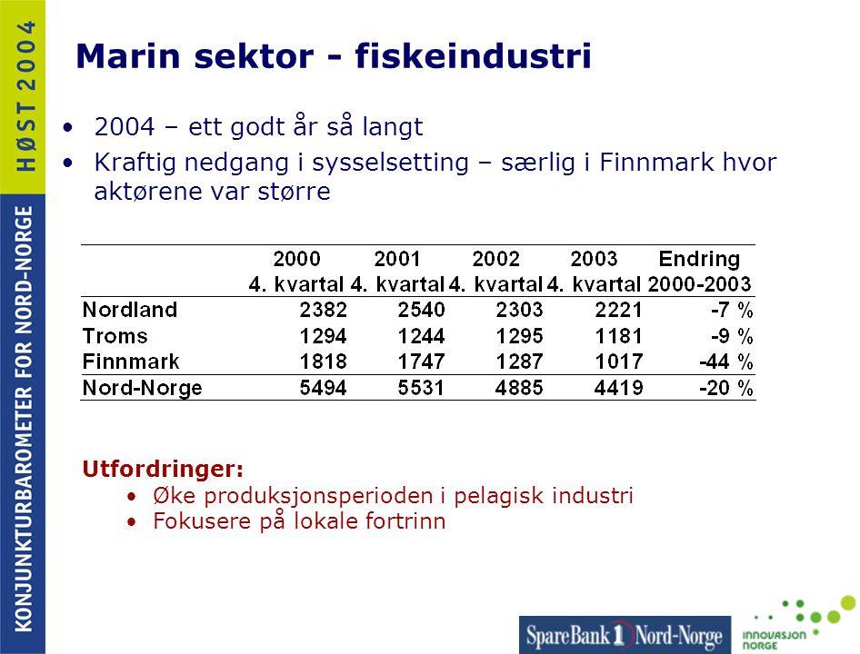 Marin sektor - fiskeindustri •2004 – ett godt år så langt •Kraftig nedgang i sysselsetting – særlig i Finnmark hvor aktørene var større Utfordringer: