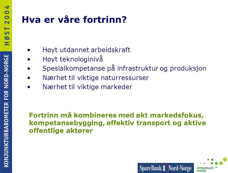 Marin sektor - fiskeindustri •2004 – ett godt år så langt •Kraftig nedgang i sysselsetting – særlig i Finnmark hvor aktørene var større Utfordringer: • Øke produksjonsperioden i pelagisk industri • Fokusere på lokale fortrinn