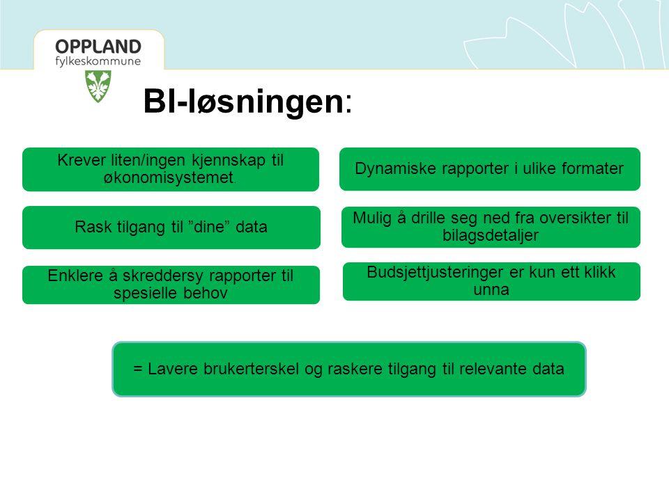 BI-løsningen: Krever liten/ingen kjennskap til økonomisystemet.