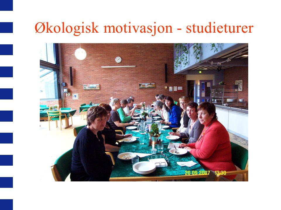 Økologisk motivasjon - matkurs