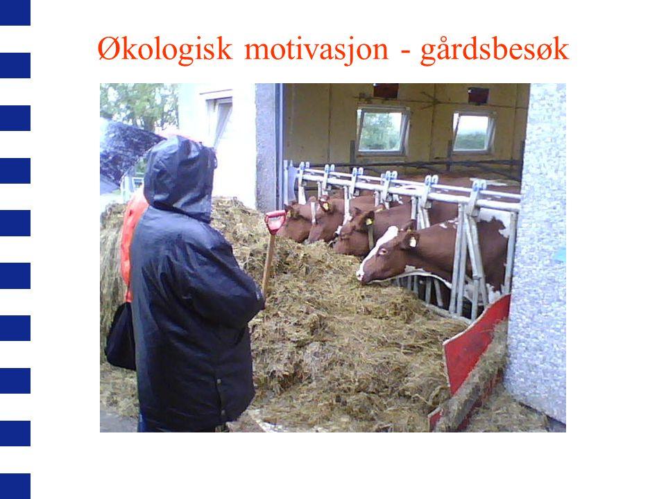 Økologisk motivasjon - messer