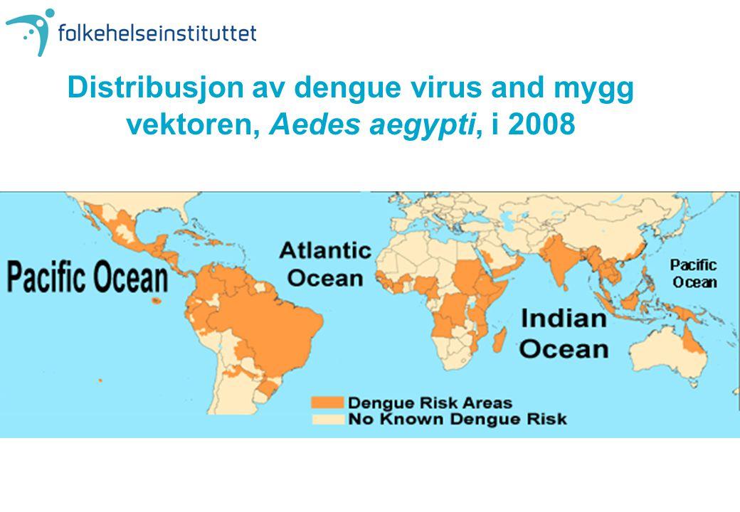 Distribusjon av dengue virus and mygg vektoren, Aedes aegypti, i 2008