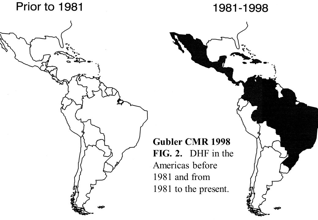 Gubler CMR 1998 FIG. 2. DHF in the Americas before 1981 and from 1981 to the present.