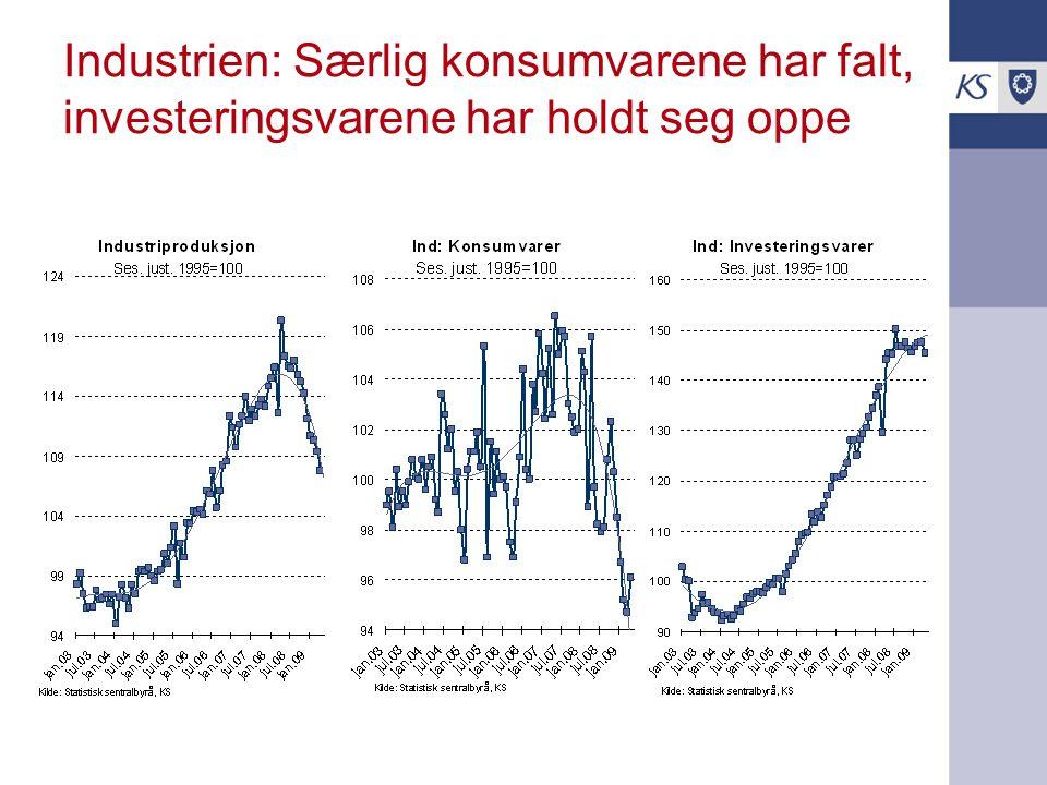 Industrien: Særlig konsumvarene har falt, investeringsvarene har holdt seg oppe