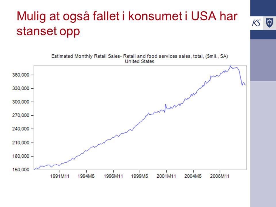 Mulig at også fallet i konsumet i USA har stanset opp