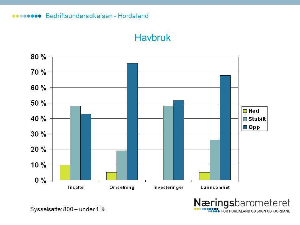 Havbruk Sysselsatte: 800 – under 1 %. Bedriftsundersøkelsen - Hordaland