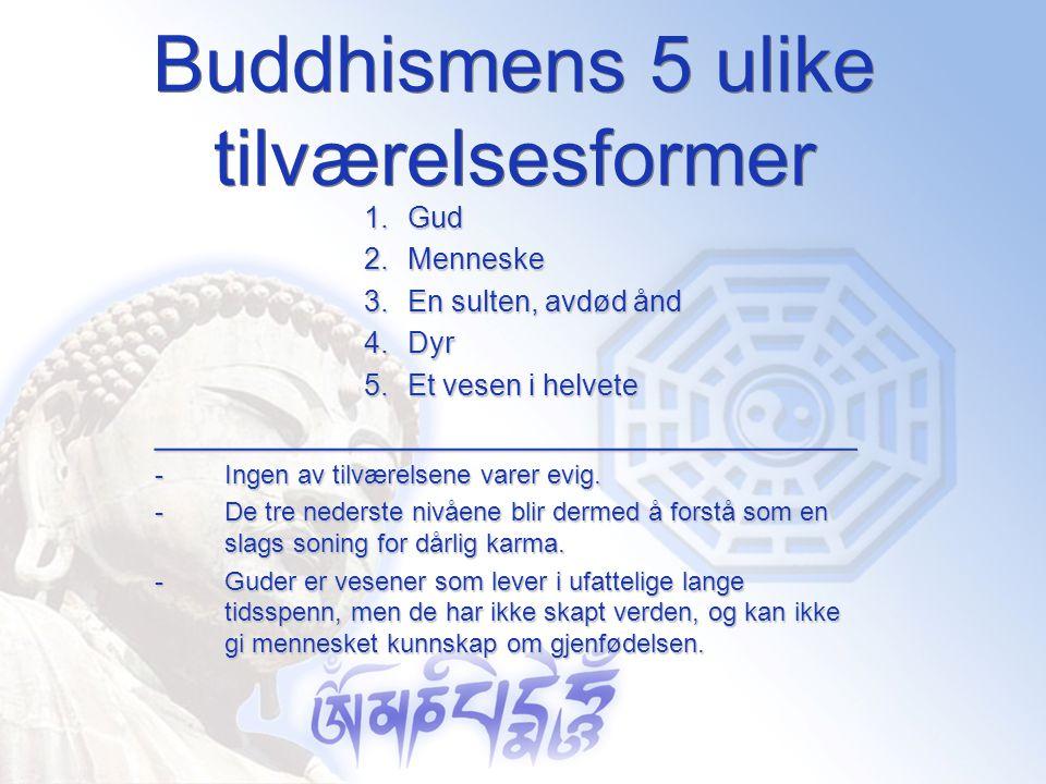 Buddhismens 5 ulike tilværelsesformer 1.Gud 2.Menneske 3.En sulten, avdød ånd 4.Dyr 5.Et vesen i helvete ____________________________________ -Ingen a