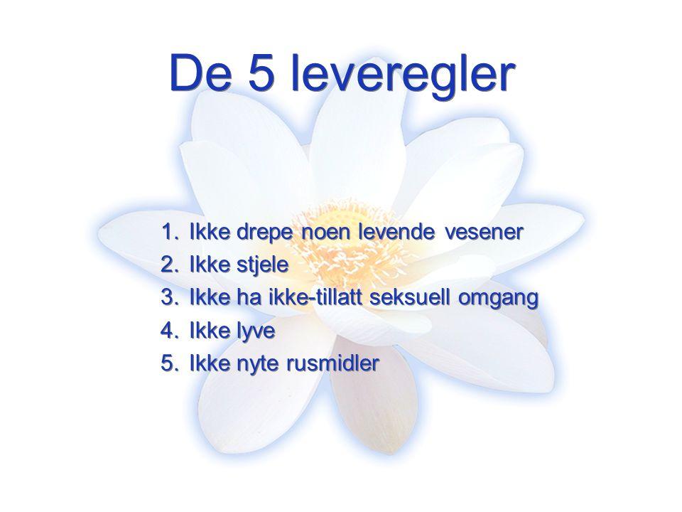 De 5 leveregler 1.Ikke drepe noen levende vesener 2.Ikke stjele 3.Ikke ha ikke-tillatt seksuell omgang 4.Ikke lyve 5.Ikke nyte rusmidler 1.Ikke drepe