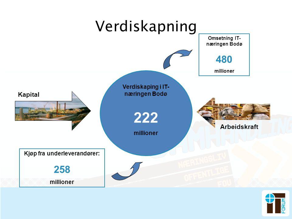 Verdiskapning Kjøp fra underleverandører: 258 millioner Verdiskaping i IT- næringen Bodø 222 millioner Omsetning IT- næringen Bodø 480 millioner Kapit