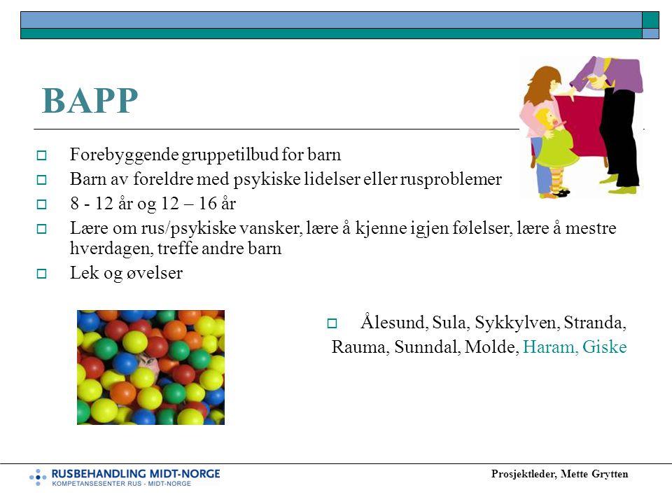 Prosjektleder, Mette Grytten BAPP  Forebyggende gruppetilbud for barn  Barn av foreldre med psykiske lidelser eller rusproblemer  8 - 12 år og 12 –
