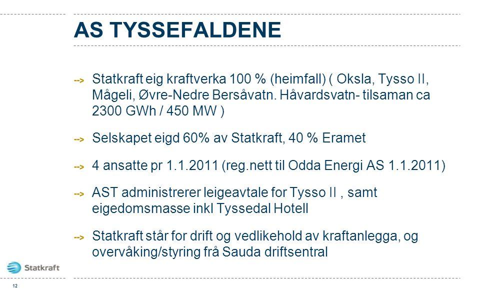 AS TYSSEFALDENE Statkraft eig kraftverka 100 % (heimfall) ( Oksla, Tysso II, Mågeli, Øvre-Nedre Bersåvatn. Håvardsvatn- tilsaman ca 2300 GWh / 450 MW