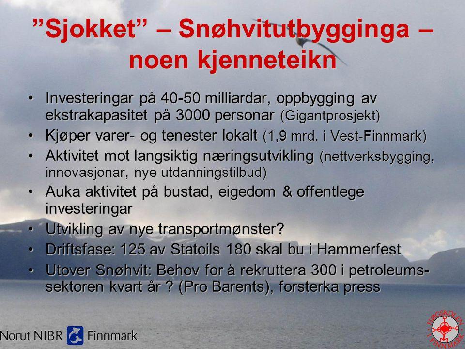 Andeler av lån og tilskudd FFK og IN, 2000 - 2005 Utvalgte områder Andel lån Andel tilskudd Andel sysselsatte Hammerfest131115 Regionale sentra 293762 Kyst623420 Innland71518