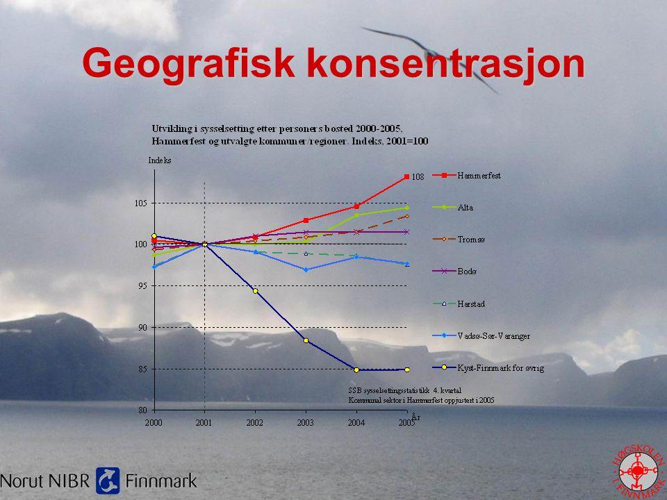 Geografisk konsentrasjon