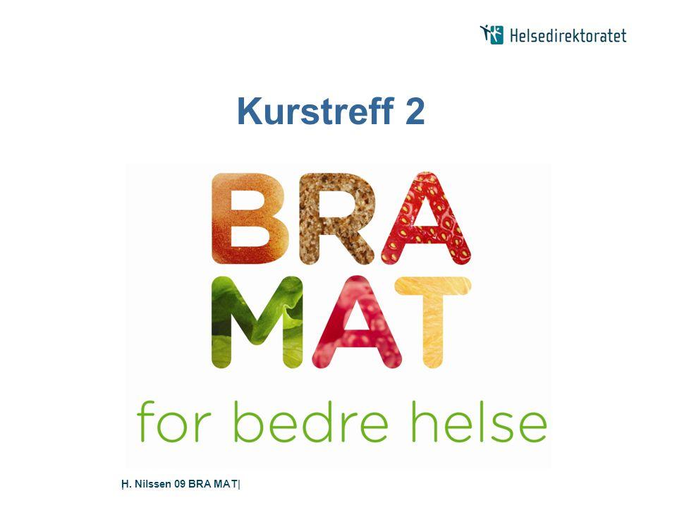 H. Nilssen 09 BRA MAT|| Kurstreff 2
