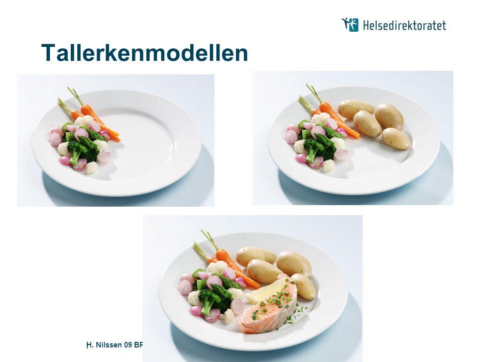H. Nilssen 09 BRA MAT|| Tallerkenmodellen
