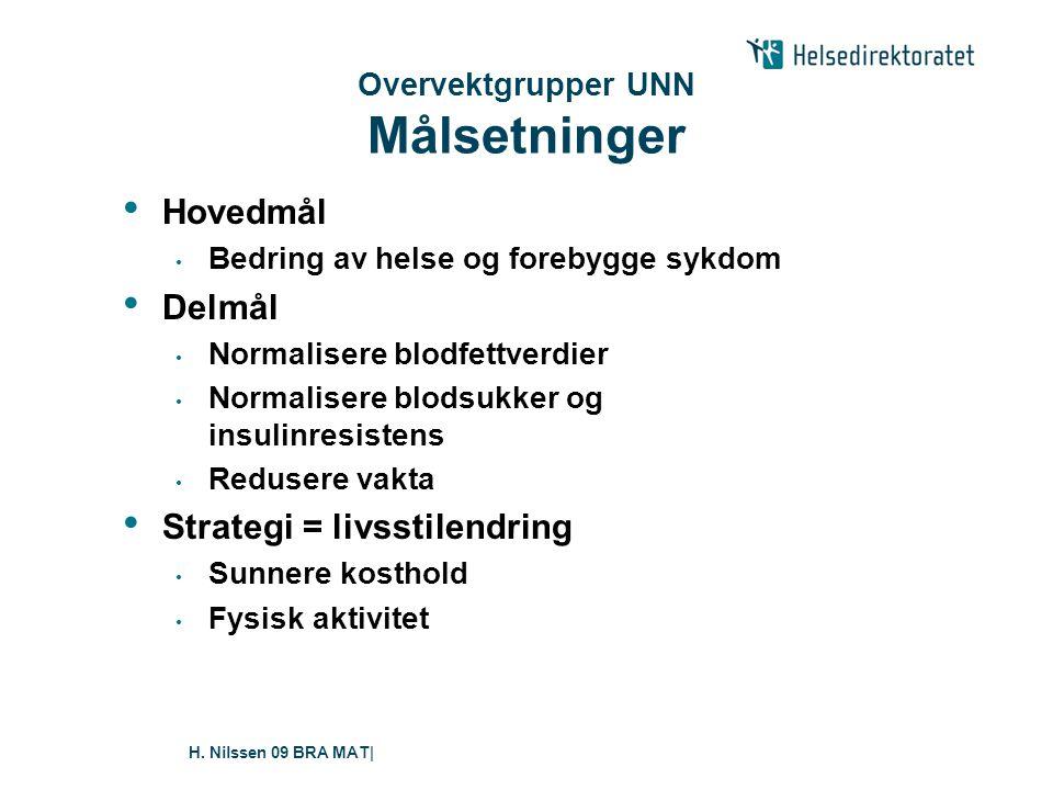 H. Nilssen 09 BRA MAT  Strategi • Bevisstgjøring • Ansvarliggjøring • Mestring