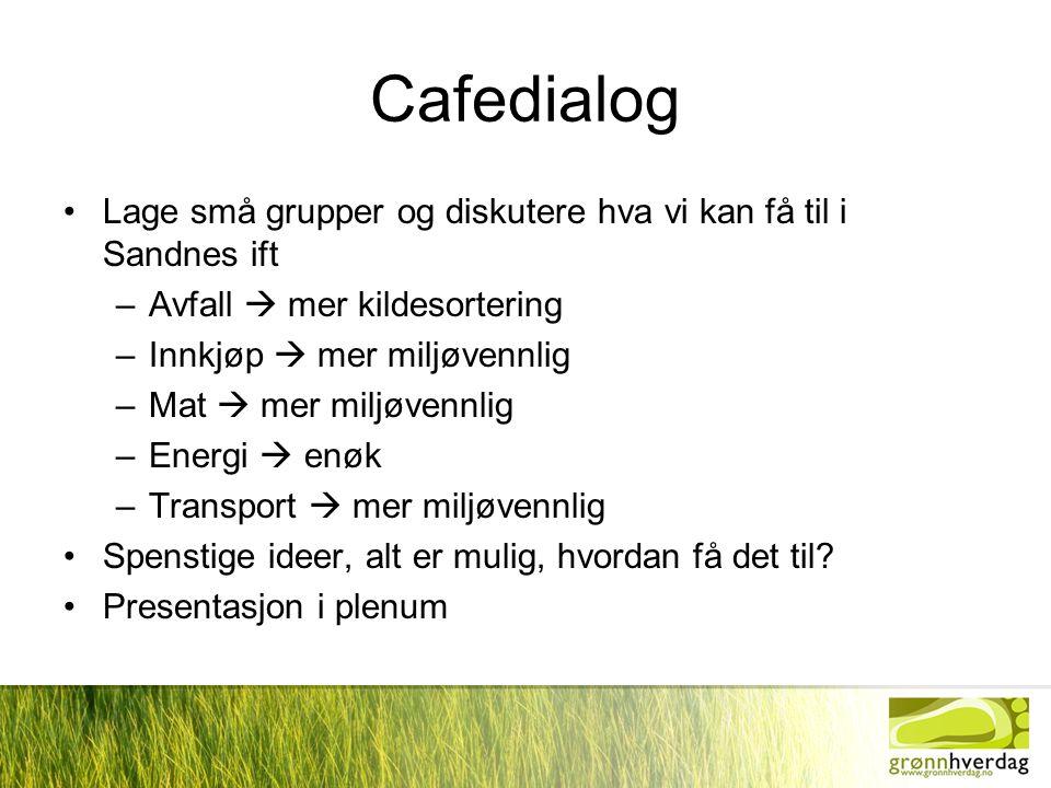 Cafedialog •Lage små grupper og diskutere hva vi kan få til i Sandnes ift –Avfall  mer kildesortering –Innkjøp  mer miljøvennlig –Mat  mer miljøven