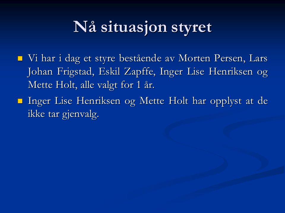 Aktuelle saker  Fortsatt forsterkning av selgerkorpset i Norge, salg til større kunder, storhusholdninger, kjeder med mer.