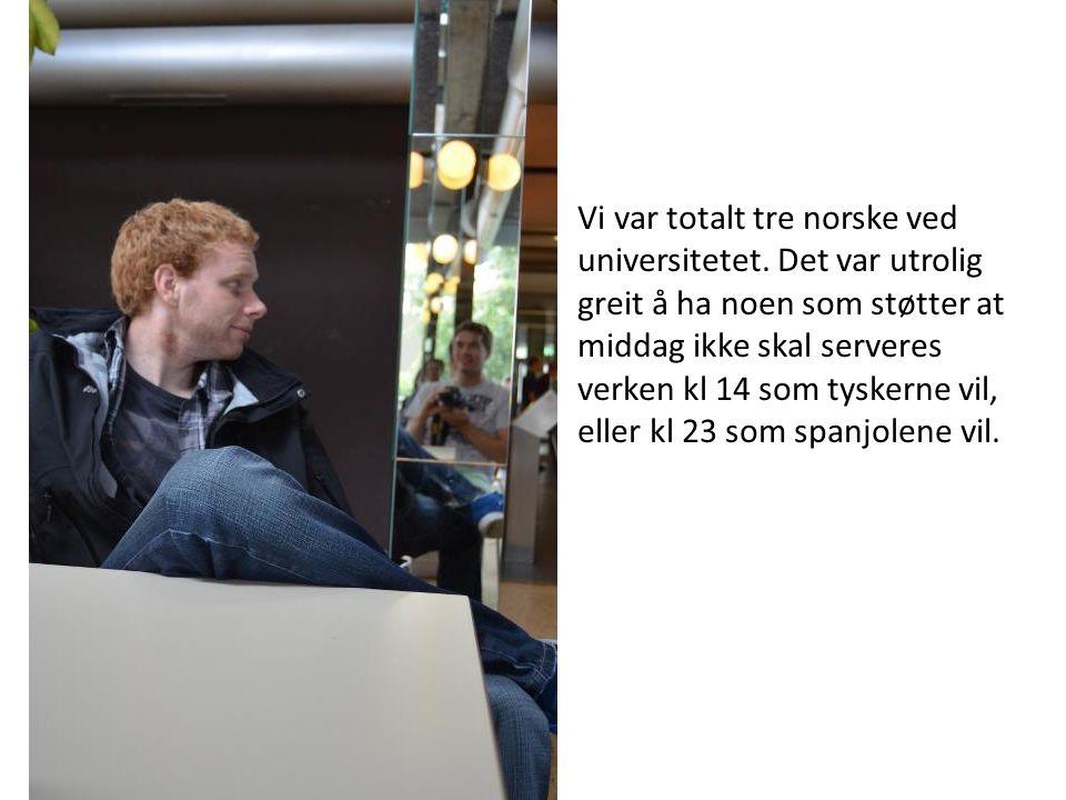 Vi var totalt tre norske ved universitetet.