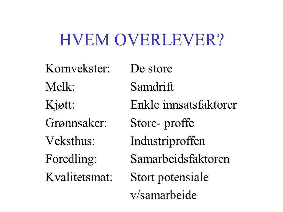 HVEM OVERLEVER.