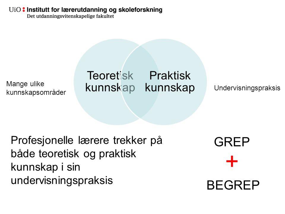 13 Teoretisk kunnskap Praktisk kunnskap Profesjonelle lærere trekker på både teoretisk og praktisk kunnskap i sin undervisningspraksis GREP BEGREP + M