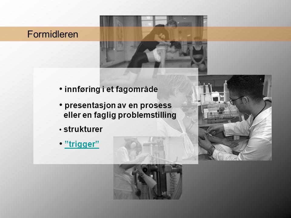 Formidleren • innføring i et fagområde • presentasjon av en prosess eller en faglig problemstilling • trigger trigger • strukturer