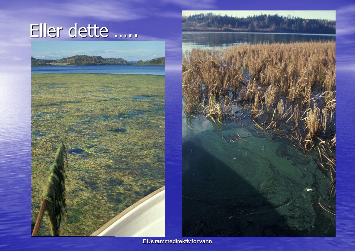 EUs rammedirektiv for vann Eller dette …..
