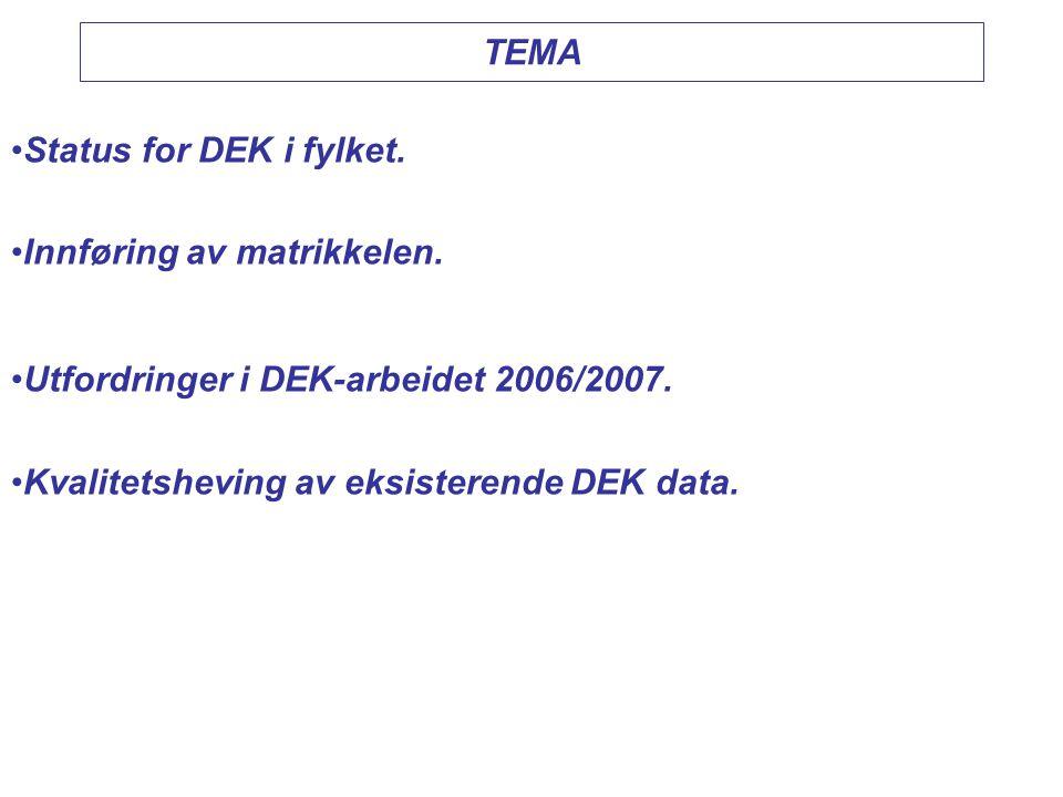 TEMA •Status for DEK i fylket. •Innføring av matrikkelen. •Utfordringer i DEK-arbeidet 2006/2007. •Kvalitetsheving av eksisterende DEK data.