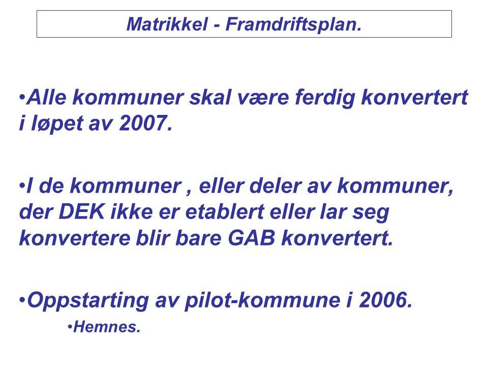 Utfordringer i DEK-arbeidet 2006/2007.•Gjenstående digitalisering av grenser fra ØK.