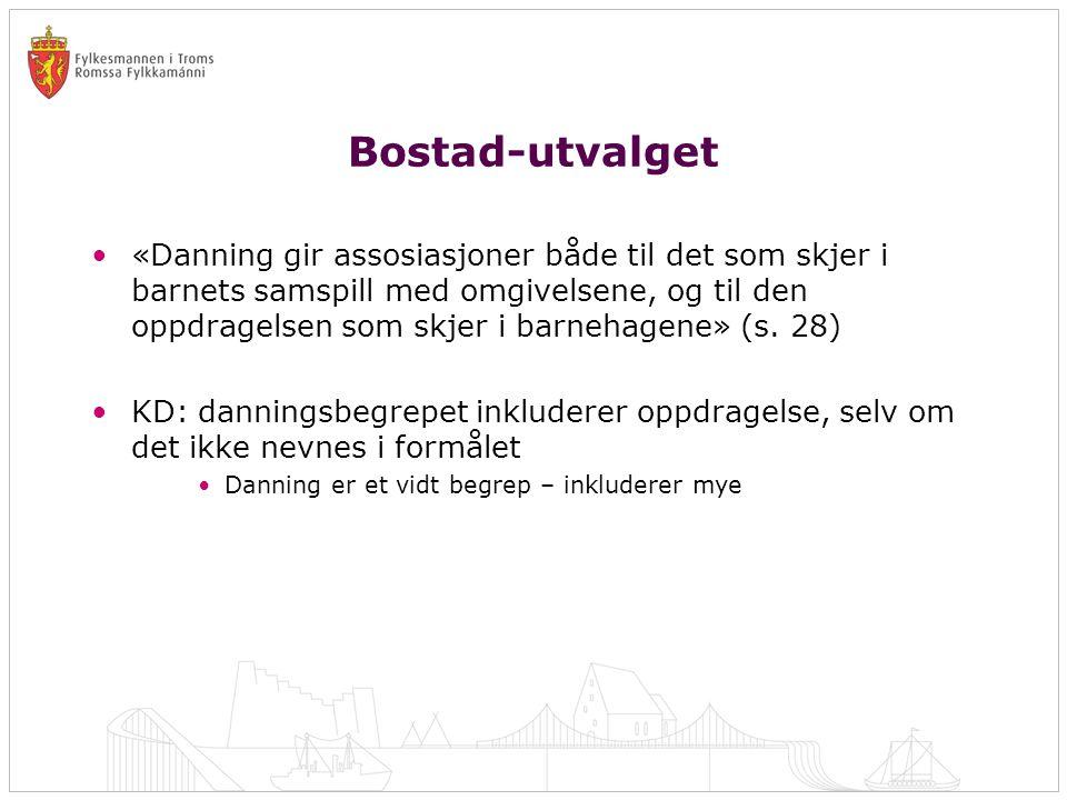 Bostad-utvalget •«Danning gir assosiasjoner både til det som skjer i barnets samspill med omgivelsene, og til den oppdragelsen som skjer i barnehagene