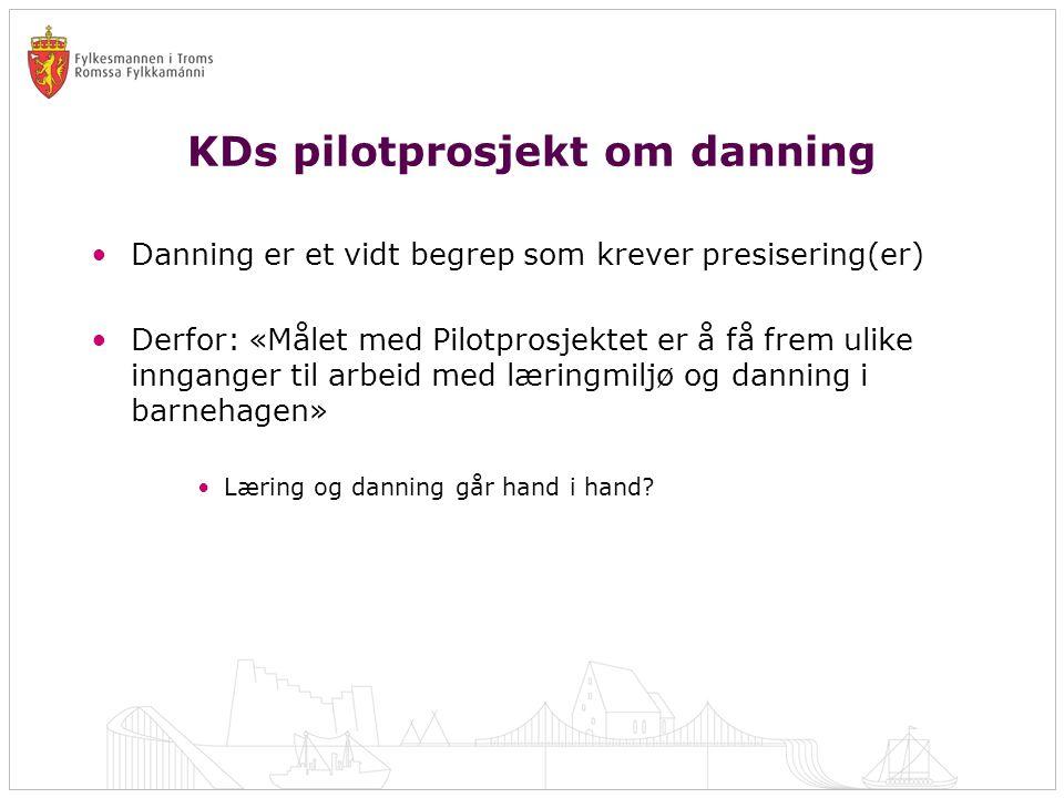 KDs pilotprosjekt om danning •Danning er et vidt begrep som krever presisering(er) •Derfor: «Målet med Pilotprosjektet er å få frem ulike innganger ti