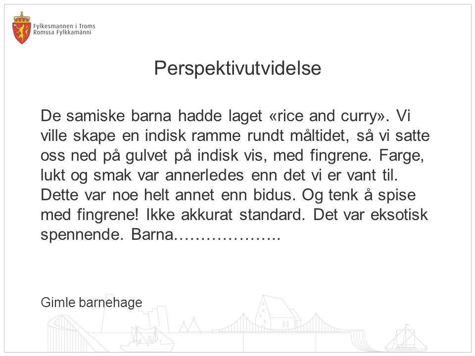 Perspektivutvidelse De samiske barna hadde laget «rice and curry». Vi ville skape en indisk ramme rundt måltidet, så vi satte oss ned på gulvet på ind