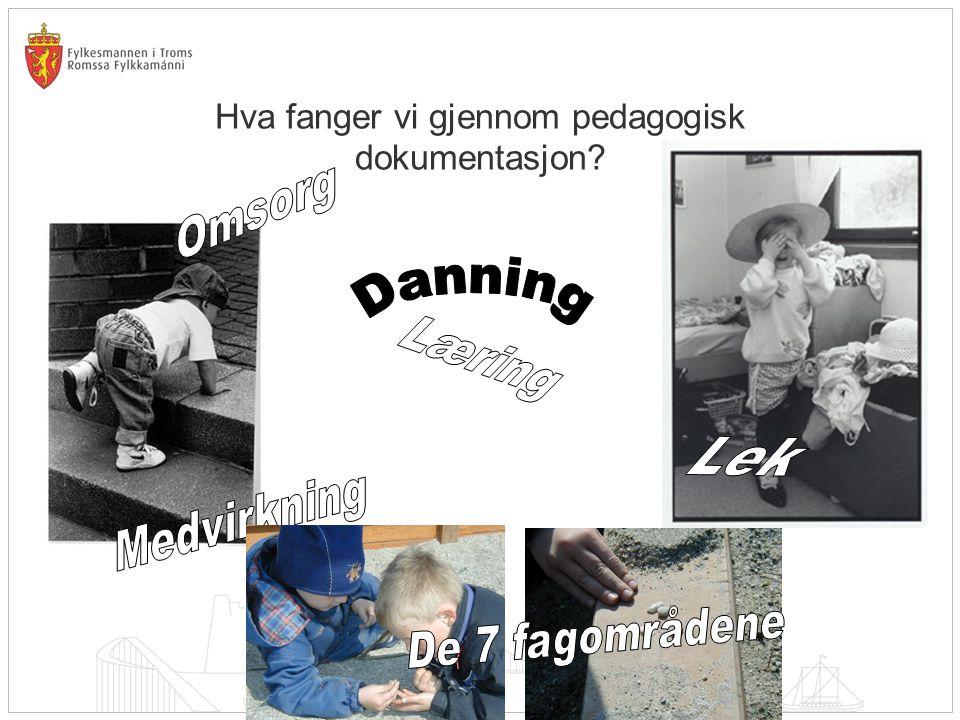 Hva fanger vi gjennom pedagogisk dokumentasjon?