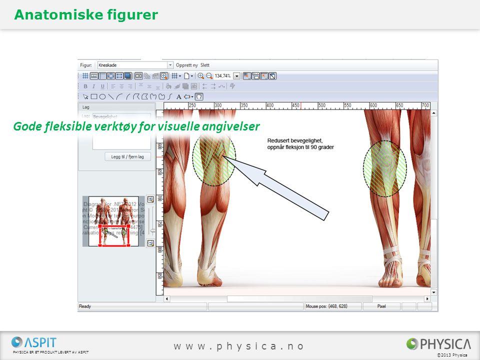 PHYSICA ER ET PRODUKT LEVERT AV ASPIT ©2013 Physica www.physica.no Anatomiske figurer