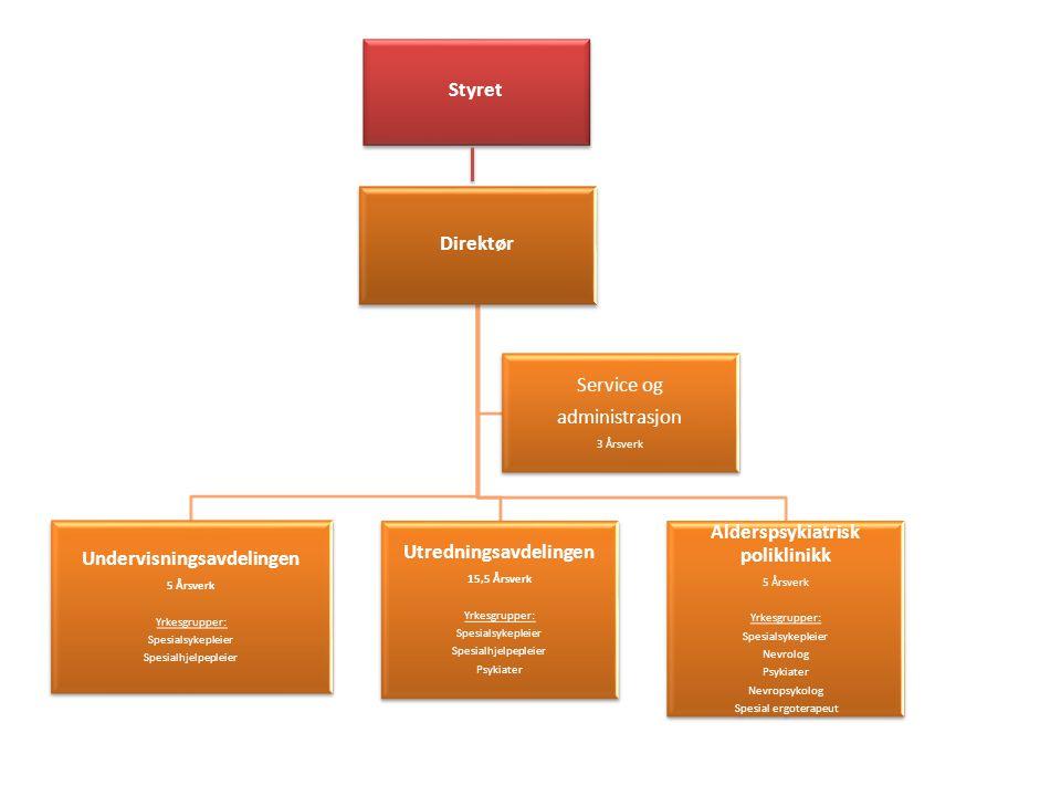 Prosjekter • Spa-rom- innviet 2010 • Sansehage- ferdig 2011 • Kvalitetsledelse – ferdig 2012 • Kontakttelefon • Regionalt tilbud til yngre personer med demens og deres pårørende.