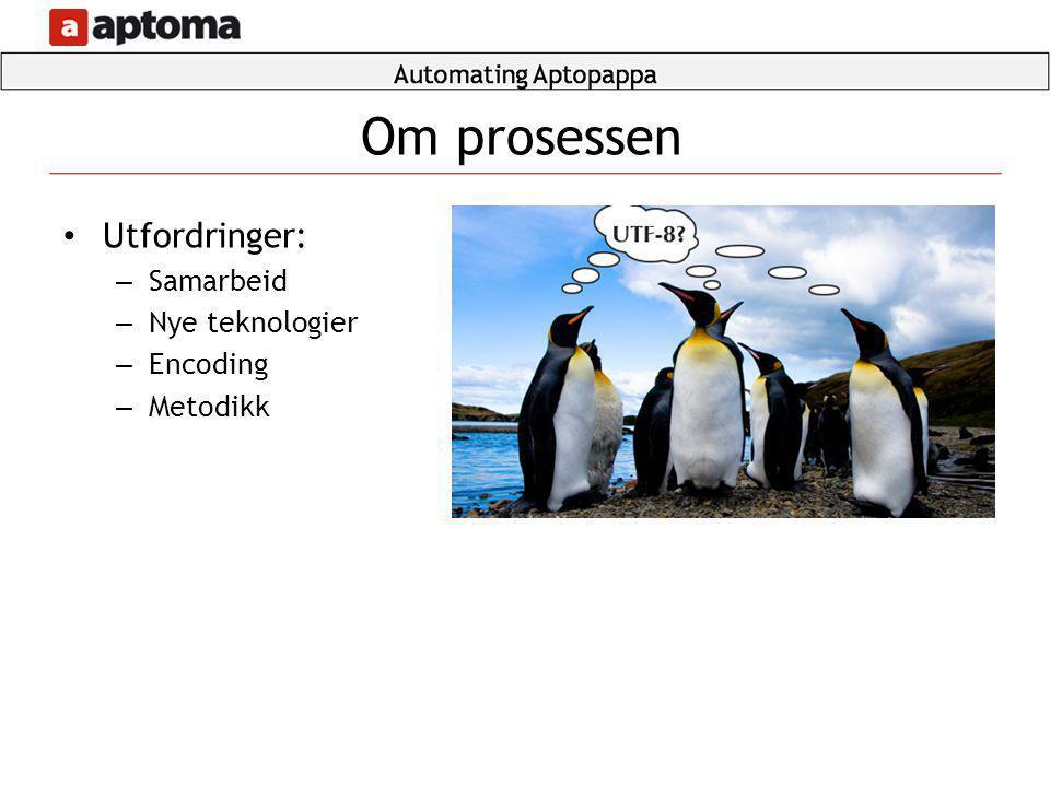 • Utfordringer: – Samarbeid – Nye teknologier – Encoding – Metodikk Om prosessen