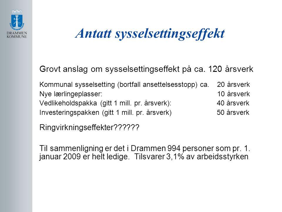 Antatt sysselsettingseffekt Grovt anslag om sysselsettingseffekt på ca. 120 årsverk Kommunal sysselsetting (bortfall ansettelsesstopp) ca. 20 årsverk
