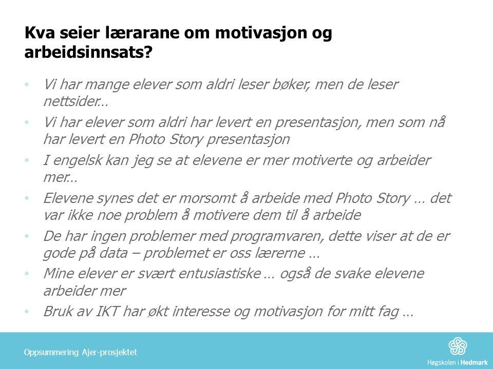 Kva seier lærarane om motivasjon og arbeidsinnsats.