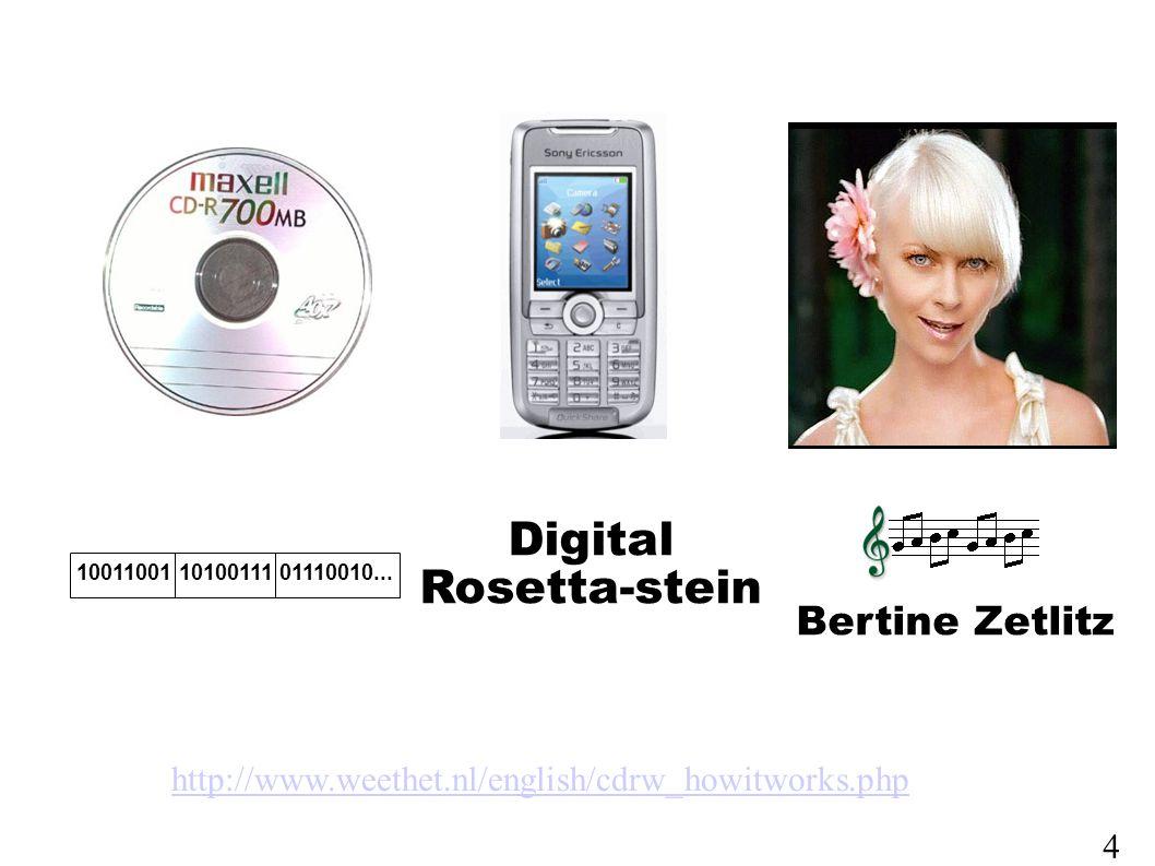 Digital Rosetta-stein 10011001 10100111 01110010...